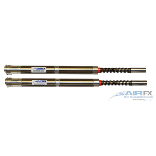 Front cartridge pair for Hawg Halters Triple Trees using long neck with 30 inch front wheel